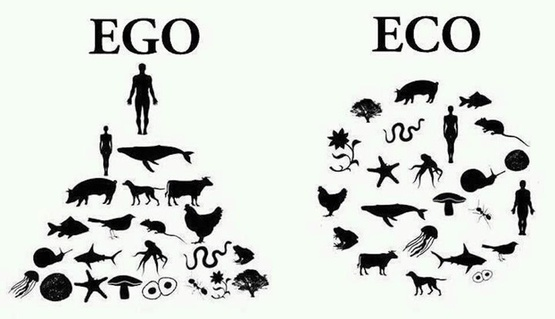 EGO: Man atop woman and pyramid of other animals. ECO: Man and woman both inside circle of other animals.